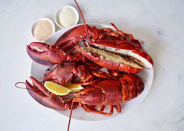lobsterplatter-1